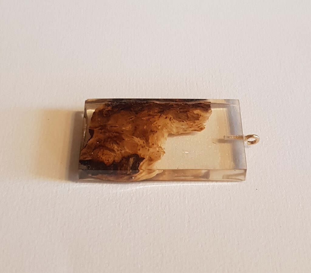Piekariņš ar ozolkoka gabaliņu un spīdumiem  072008047025